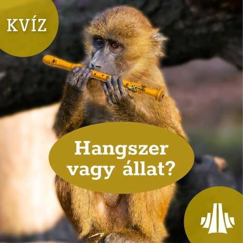 bftz-kviz04
